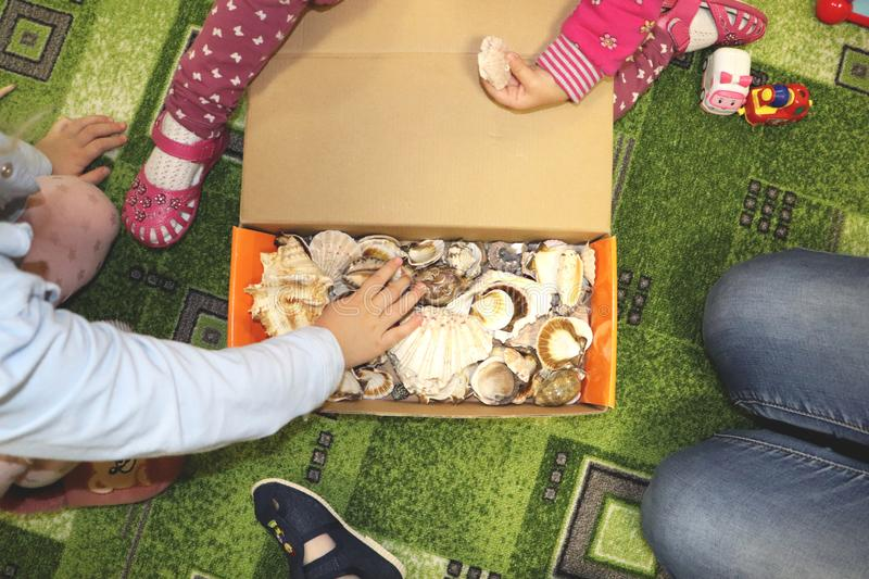 Thematic occupation in the kindergarten on the theme of the sea. Sea shells and shellfish in a close-up box. Sea shells and shellfish in a close-up box. Thematic royalty free stock photography