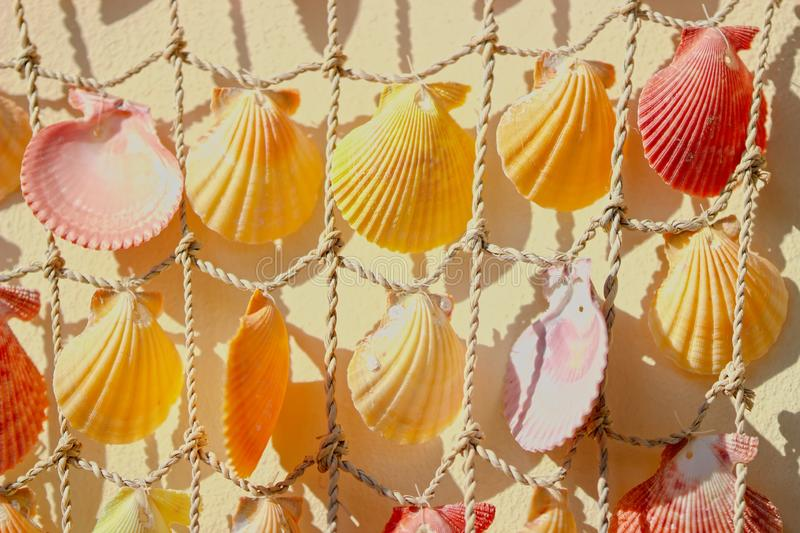 Sea Shells tied to string to make a decoration for the family home stock images