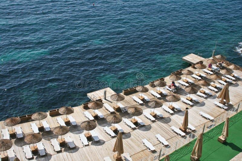 Download Sea shore stock photo. Image of peace, parasol, breeze - 19805302