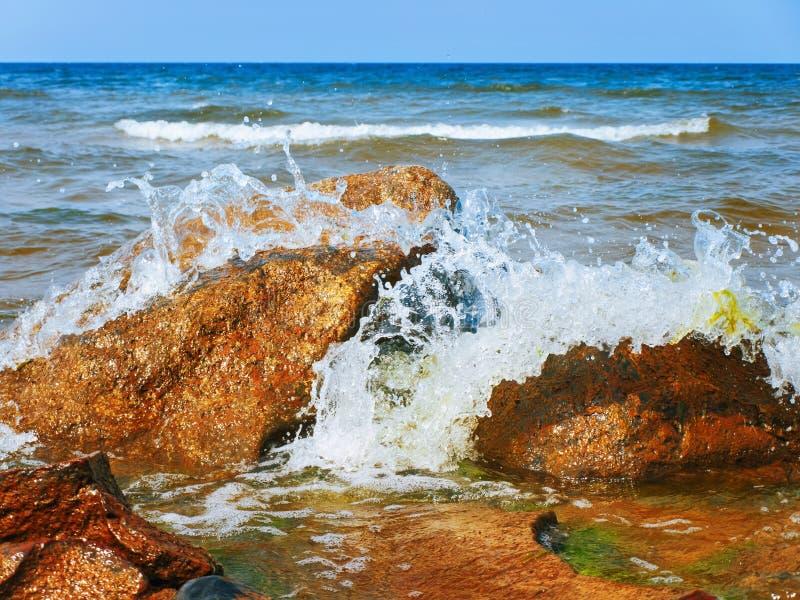 Download Sea Shore stock photo. Image of surf, splashing, wavy - 27823122