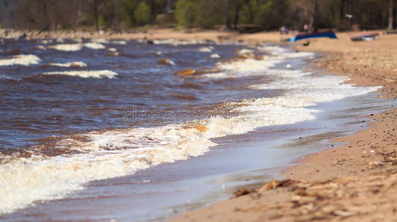 Sea shore stock images