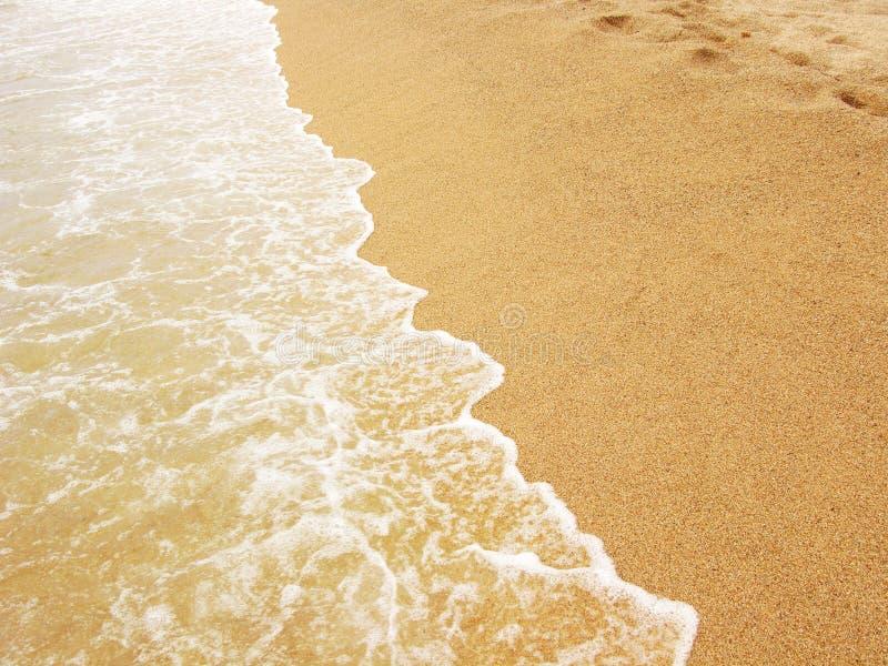 Sea shore and sandy beach royalty free stock photos