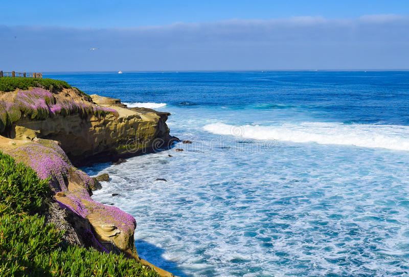 Sea, Sky, and Flowering Cliffs at La Jolla Cove in San Diego, California. The cliffs at La Jolla Cove in San Diego, California are coated in purple in the stock images
