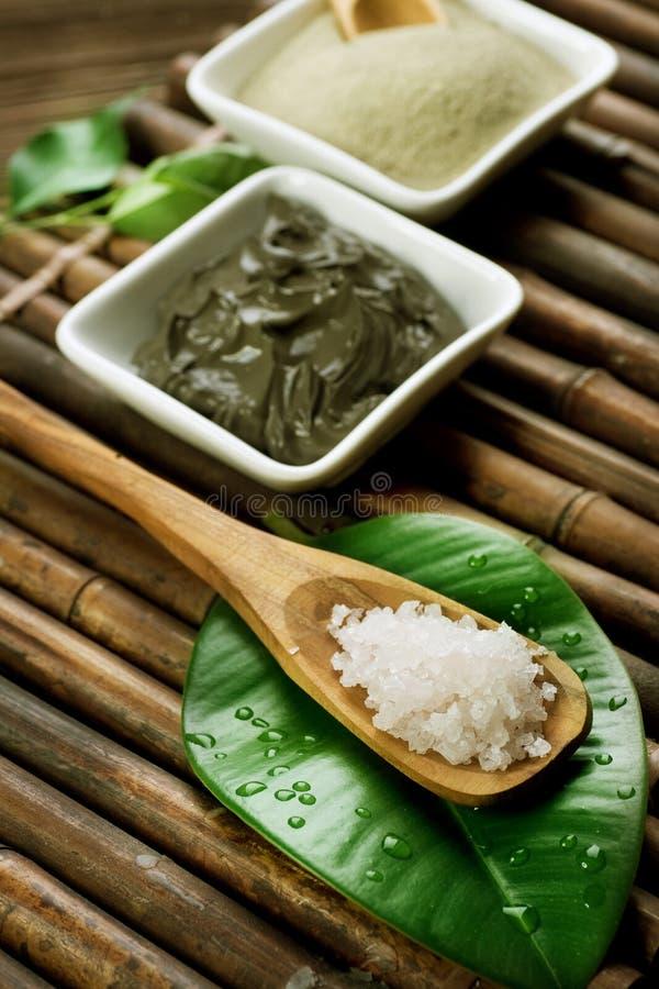 Sea Spa Salt And Mud Mask Royalty Free Stock Image