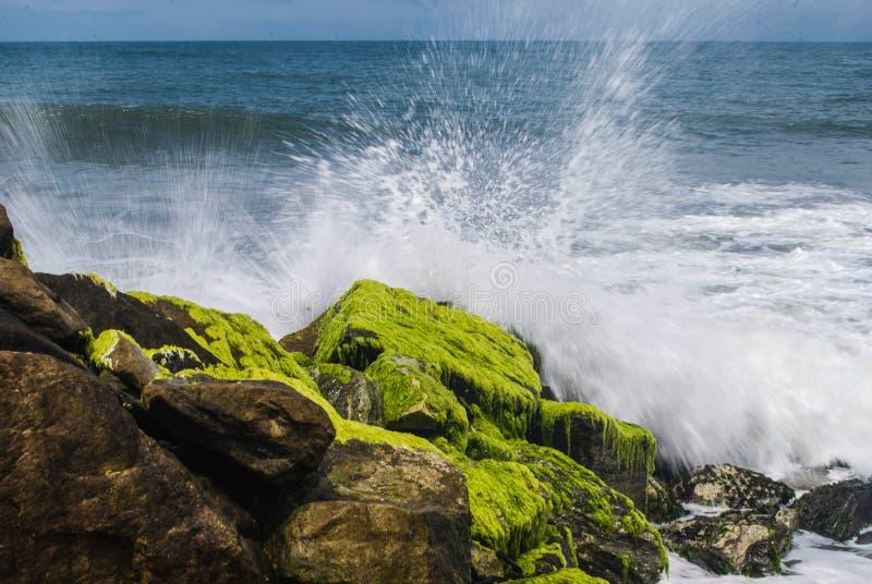Sea Splash. Waves Splash on the rocks at Paravoor, Kerala Arabian Sea royalty free stock photo