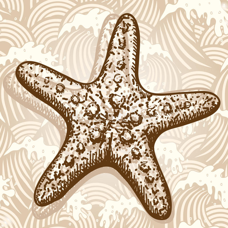 Download Sea star stock vector. Illustration of retro, collection - 25230674