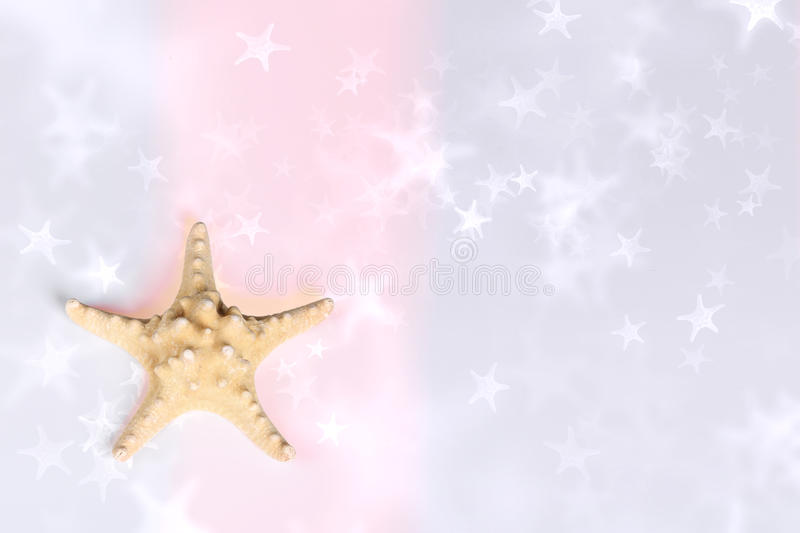 Download Sea star background stock image. Image of sunny, star - 27590197