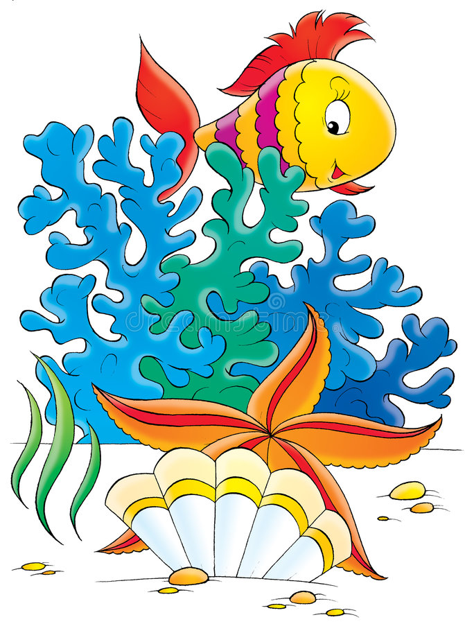 Sea star, shell and coral fish vector illustration