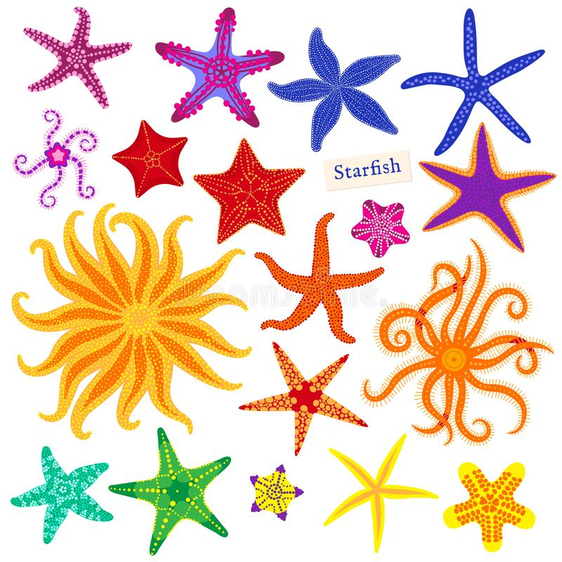 Free Sea Stars Set. Multicolored Starfish On A White Background. Starfishes Underwater Invertebrate Animal. Vector Royalty Free Stock Images - 111941429