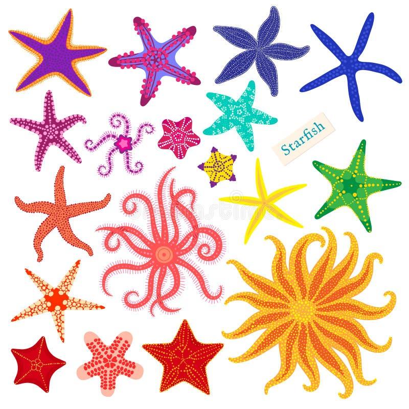 Free Sea Stars Set. Multicolored Starfish On A White Background. Starfishes Underwater Invertebrate Animal. Vector Stock Image - 112099811