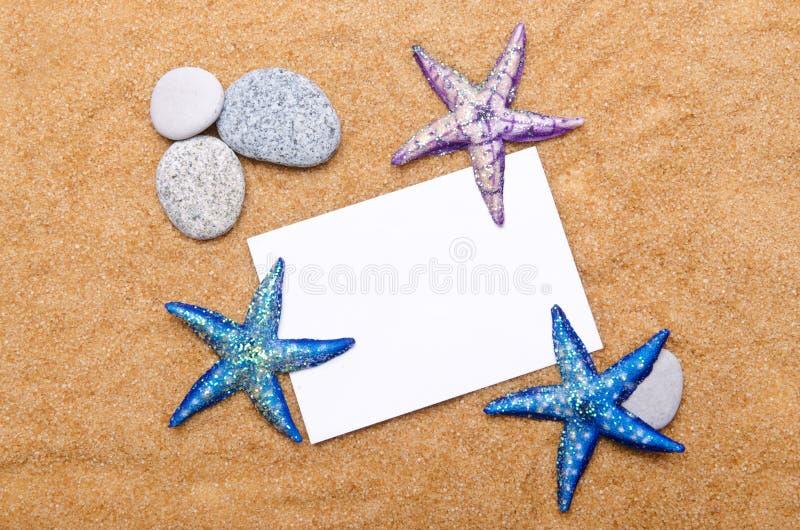 Sea stars  on  white