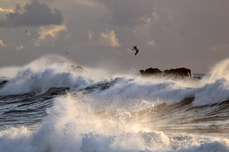 Sea storm with big breaking waves stock image