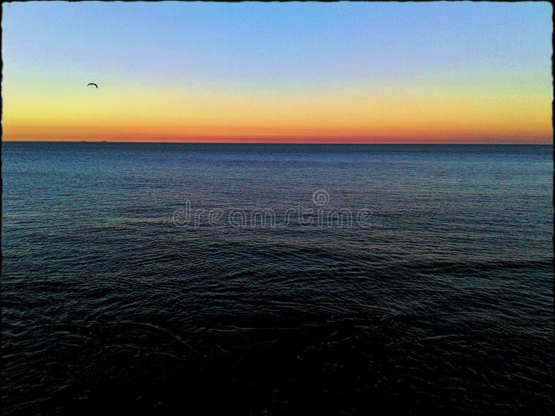 Sea and sunset. Sea sunset water bird Sun sky swim relax yoga mind reflex refract World line horizont stock photo
