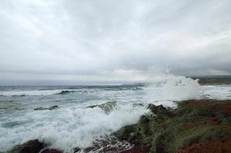 Sea surf stock image
