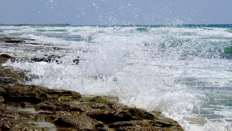 Sea surf wave in summer royalty free stock photo