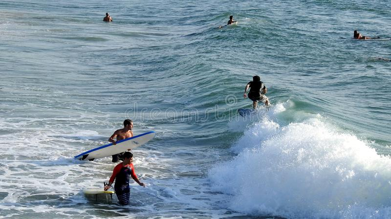 Sea surfing in summer stock image