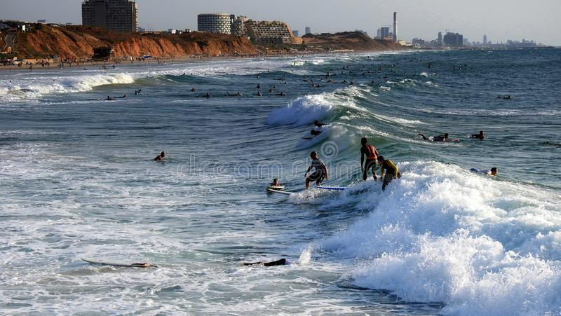Sea surfing in summer royalty free stock image