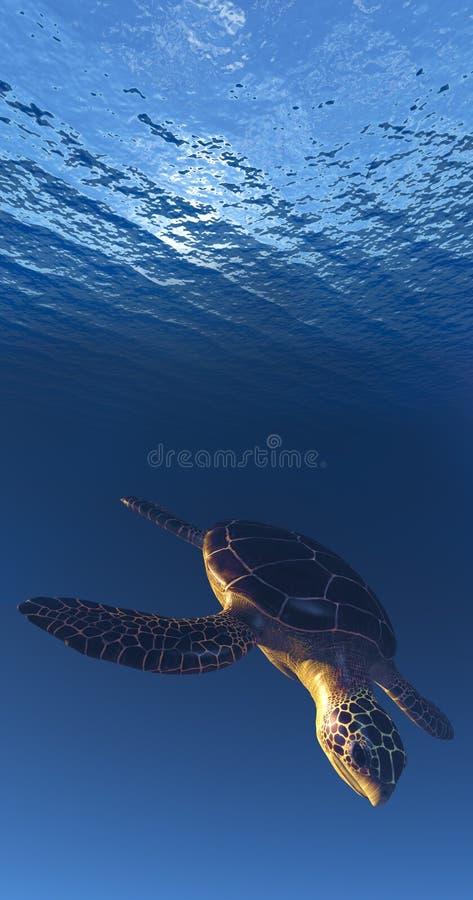 Sea Tortoise Descending Royalty Free Stock Photo