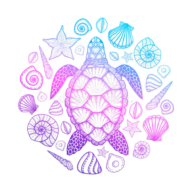 Sea turtle and shells in line art style. Hand drawn vector illustration. Design for coloring book. Set of ocean elements stock illustration