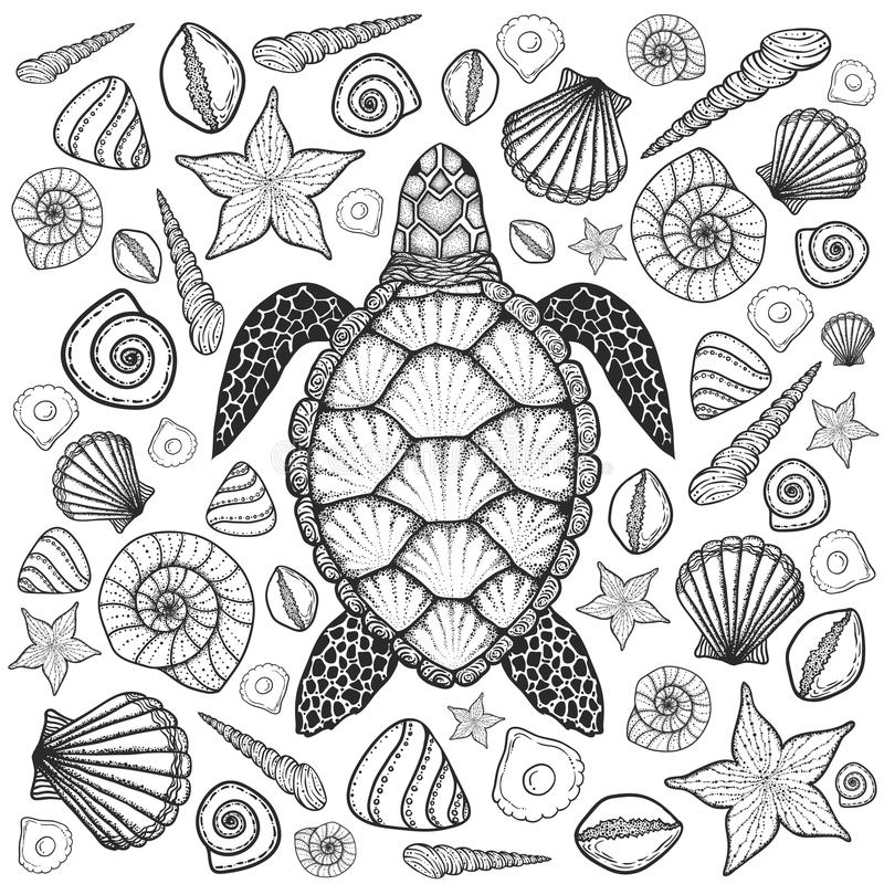 Sea turtle and shells in line art style. Hand drawn vector illustration. Set of ocean elements vector illustration
