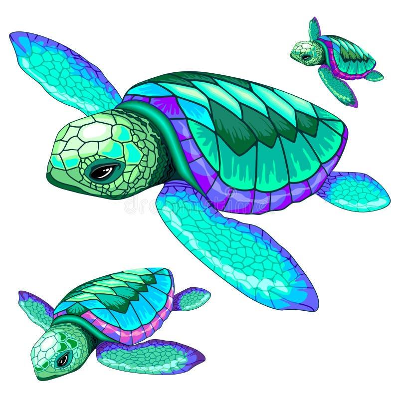 Free Sea Turtles Dance Oceanlife Vector Illustration Royalty Free Stock Photo - 174133415