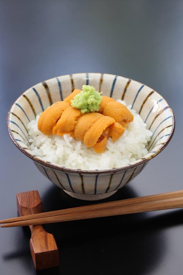 Sea urchin roe on rice, japanese food stock photos