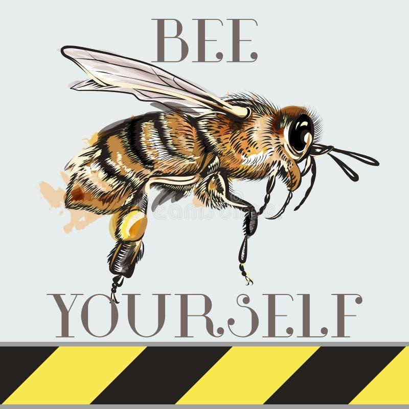 Sea usted mismo, ejemplo del vector de la moda con la abeja para la impresión de la camiseta stock de ilustración