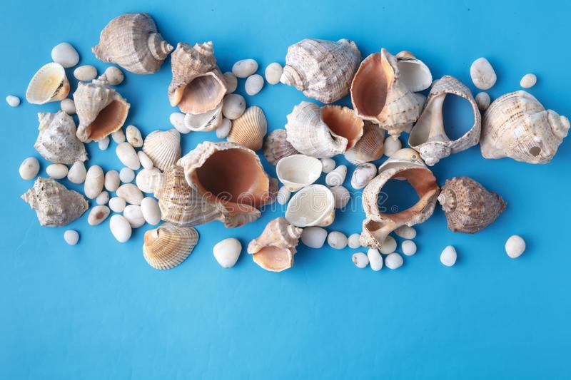 Sea vacation frame with shell on blue royalty free stock photo