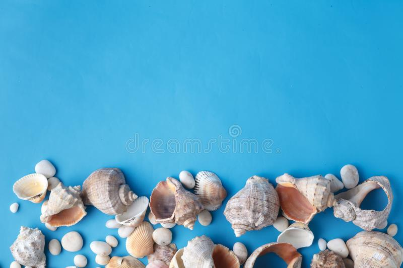 Sea vacation frame with shell on blue stock photos