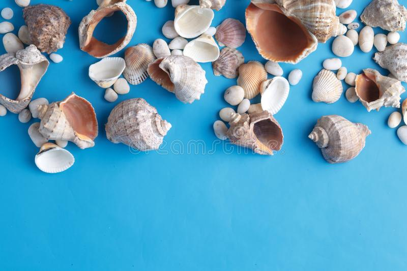 Sea vacation frame with shell on blue royalty free stock photos
