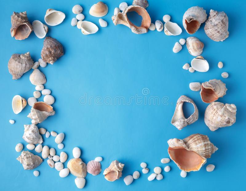Sea vacation frame with shell on blue stock photography