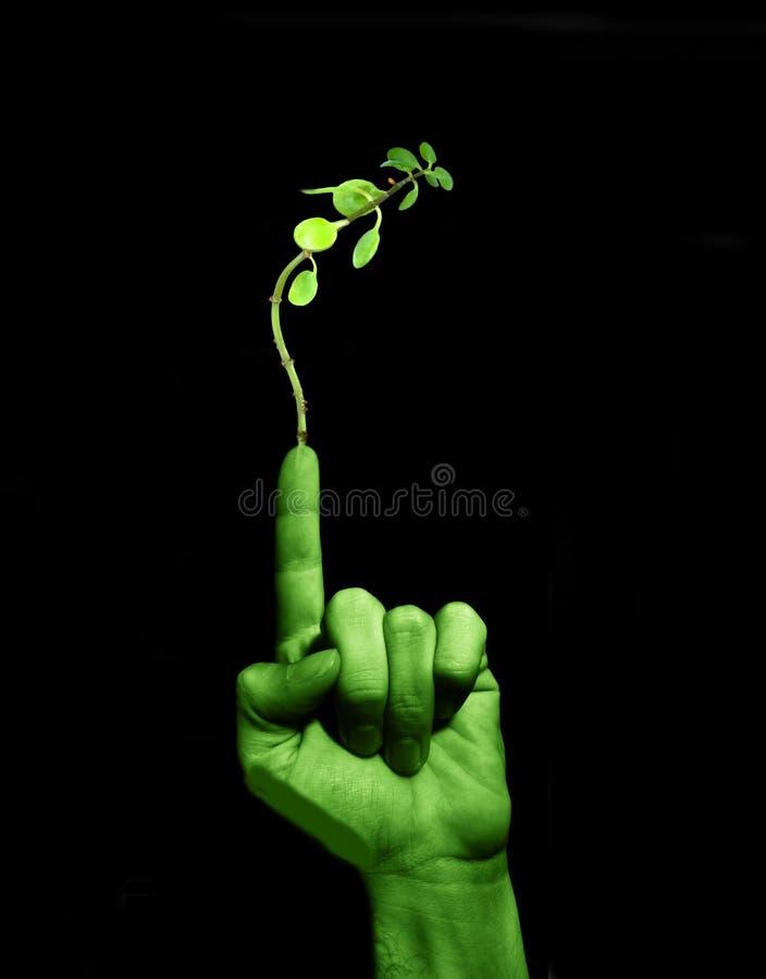 Sea verde fotografía de archivo libre de regalías