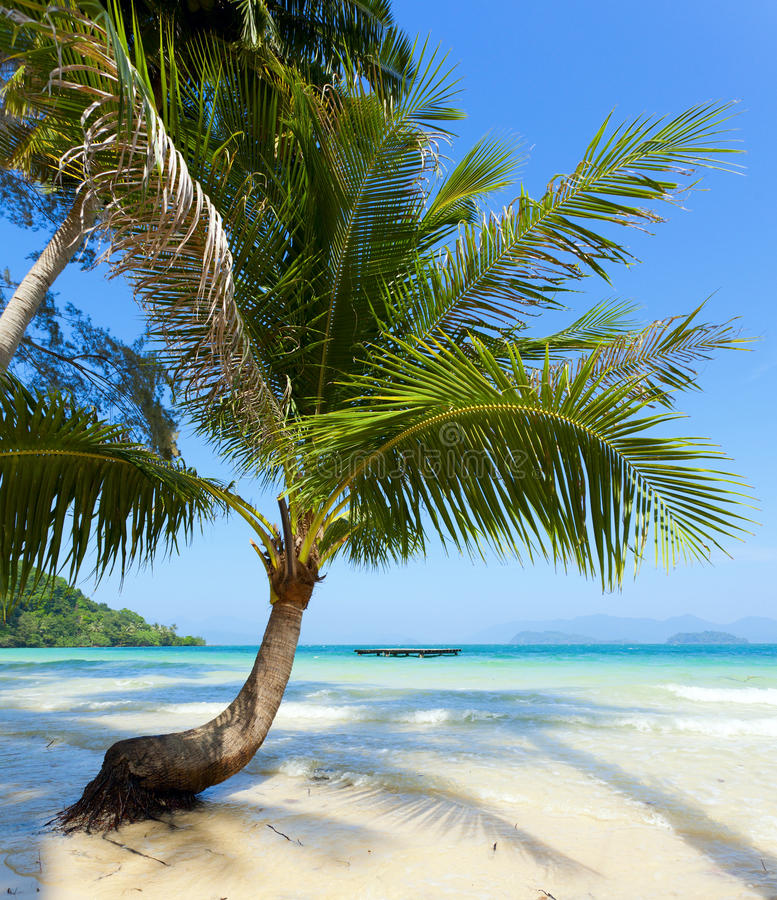 Download Sea View stock photo. Image of travel, sand, green, shore - 24855592