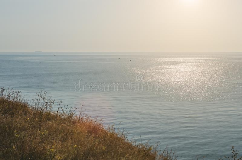 Sea view from a high hill overgrown with wild grass.  royalty free stock images