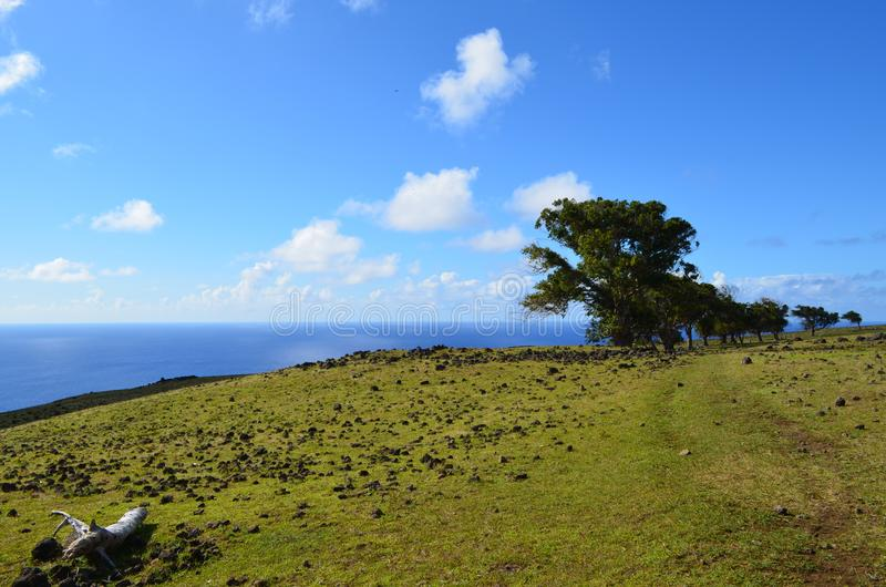 Sea view from the slopes of volcano Terevaka, Rapa Nui Easter Island. The triangular-shaped Easter Island, or Rapa Nui, is of volcanic origin and in fact royalty free stock photos