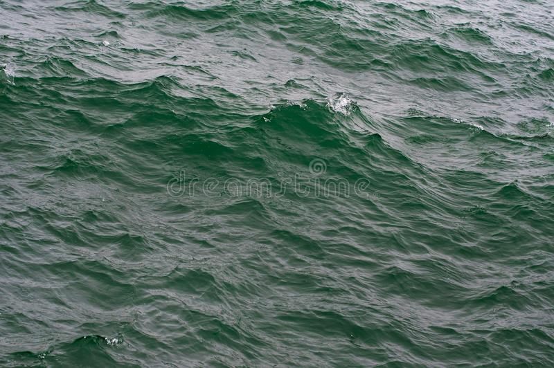 Sea water texture in the storm. Nature background royalty free stock image
