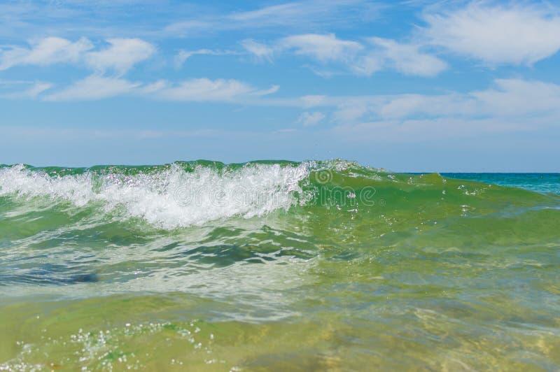 Tropical sea wave close up view stock photos