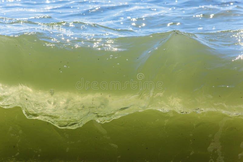 Sea waves. Balck Sea, Crimea. Ukraine June 2015 stock images