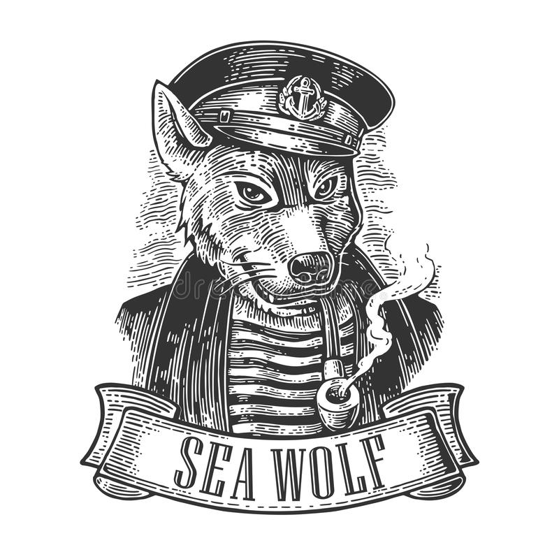 Sea wolf with pipe and ribbon. vector illustration