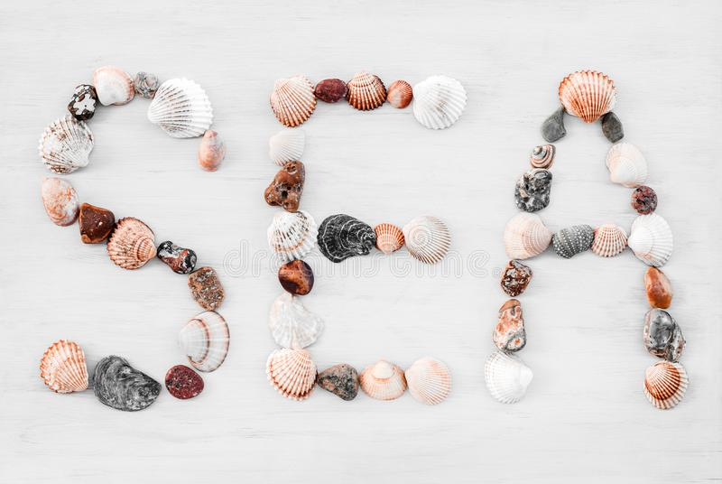 SEA written with seashells on white wooden surface stock image