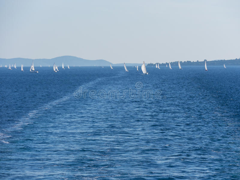 sea, yachts, regatta royalty free stock photography