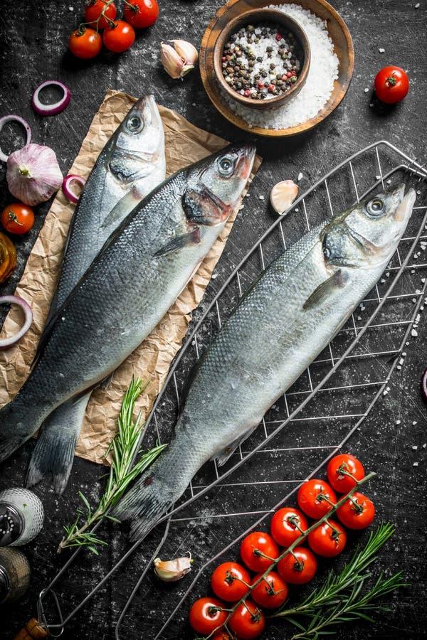 Seabass ακατέργαστων ψαριών σε ένα πλέγμα με τις ντομάτες και τα καρυκεύματα στοκ φωτογραφίες με δικαίωμα ελεύθερης χρήσης
