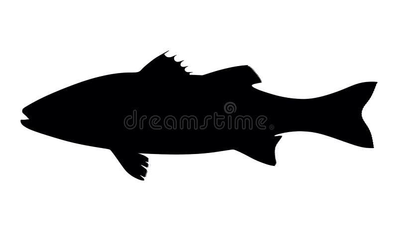 Seabass dos peixes da silhueta ilustração royalty free