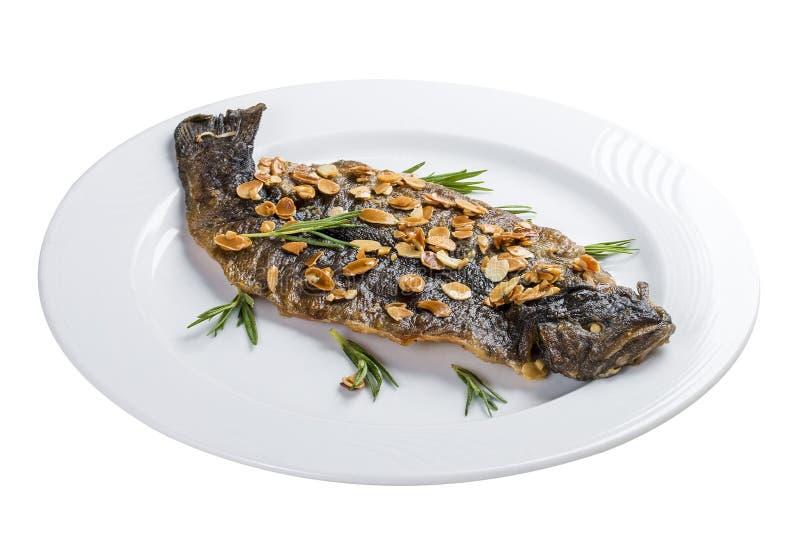 Seabass grill na białym talerzu obrazy stock