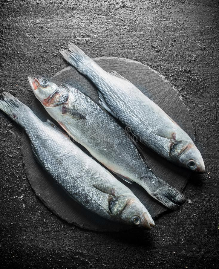 Seabass raw fish. On black rustic background stock images