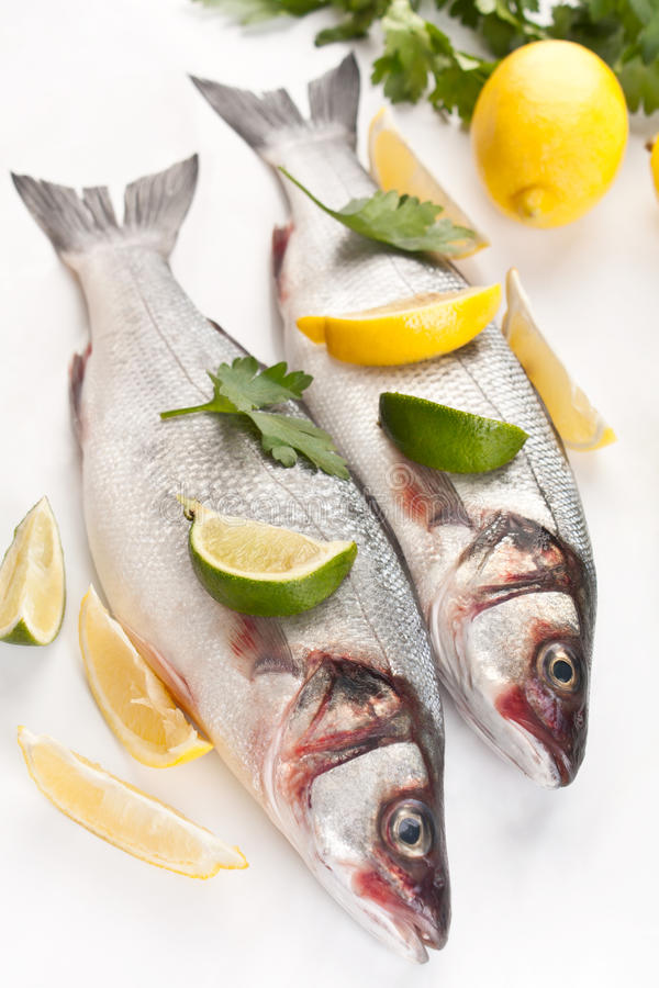 Seabassfisk med hebs, limefrukter och citroner arkivbild