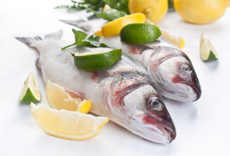 Seabassfisk med hebs, limefrukter och citroner fotografering för bildbyråer
