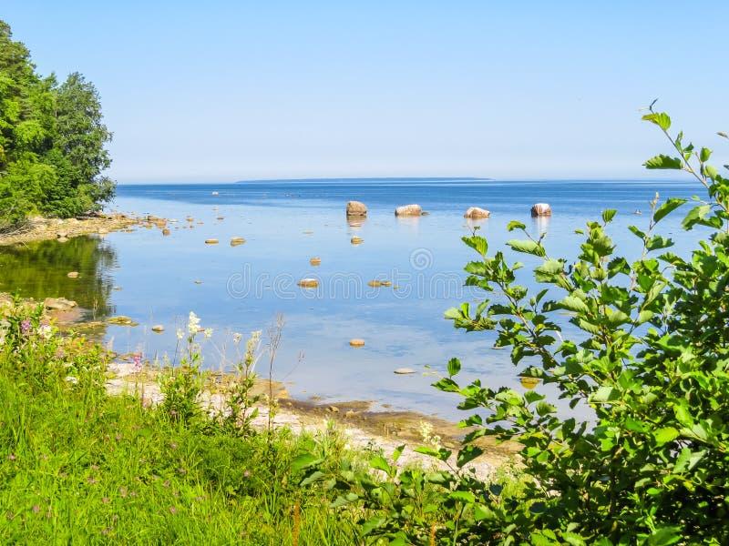 Seacoast do mar Báltico imagem de stock