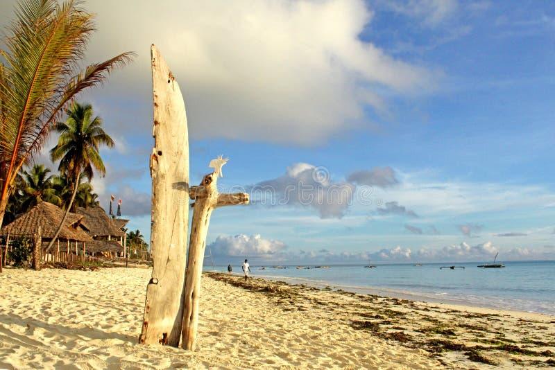Seacoast exótico do paraíso da praia de Zanzibar imagens de stock