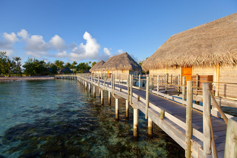Download Seacoast With Palm Trees And Small Houses On Water Stock Image - Image: 21414693